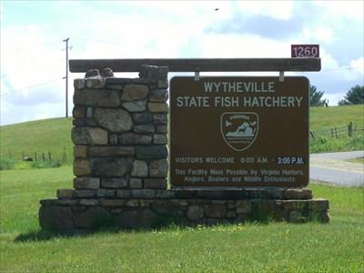 Wytheville state fish hatchery wytheville va fish for Virginia fish hatchery