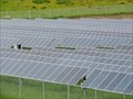 Image for Solar plants nearly complete in Reed Point and Hardin