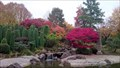 Image for The Japanese Garden - Bonn, Germany
