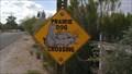 Image for Prairie Dog Crossing - Tucson, AZ