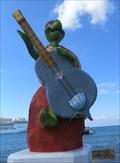 Image for Turtle Guitarist - San Miguel de Cozumel, Mexico