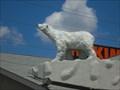 Image for Hakim Polar Bear - London, Ontario