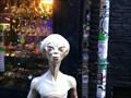 Image for Grey Alien - Amsterdam - Netherlands
