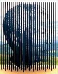 Image for Nelson Mandela - Howick, uMgungundlovu, KwaZulu-Natal, ZA