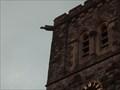 Image for Gargoyles on St Peter & St Paul's Church, Leybourne, Kent. UK