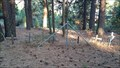 Image for Spencer Pet Cemetery - Klamath County, OR