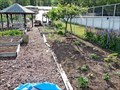 Image for West Village Community Garden - Quesnel, BC