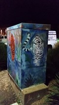 Image for Tiger Box - Santa Fe, NM