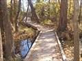 Image for Avery Bridge