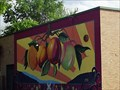 Image for Bounty of color - Denton, TX