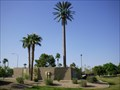 Image for Pseudopalm in Chaparral Park - Mesa, AZ