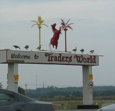 Traders World Ohio >> Horse Statue At Traders World Monroe Oh Roadside Attractions On