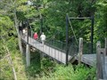 Image for Suspension Bridge over Devil's Pool and Springs