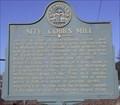 Image for Site: Cobb's Mill - GHM 044-58 - DeKalb Co., GA