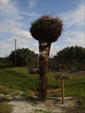 Image for Scary Tiki Mailbox - Merritt Island, FL