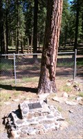 Image for The Shrapnel Tree - Mitchell Recreation Area - Lake County, OR