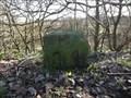 Image for Manchester Bolton & Bury Canal Mile 8 1/2 - Ladyshore, UK