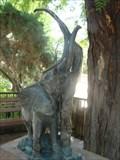 Image for Bronzes for the Blind: African Elephant - Tucson, Arizona