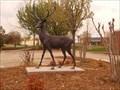 Image for Stately Stag - Silver Leaf Business Park - Edmond, OK