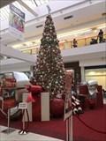 Image for Newpark Mall Christmas Tree - Newark, CA