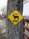 Image for Jersery Xing - Grand Forks, British Columbia