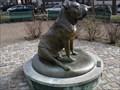 Image for Gamekeeper's Night Dog - Philadelphia, PA