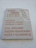 Image for Vilém Gross - Oslavany, Czech Republic