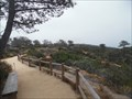 Image for Torrey Pines Park ditches trash cans  -  San Diego, CA