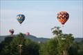 Image for Hillsborough Balloon Festival