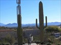 Image for Cactus Disguised Cell Tower