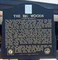 Image for The Big Woods