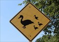 Image for Geese Crossing - Highland Village, TX