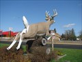 Image for Huge Deer in Deerwood, Minnesota