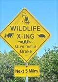 Image for Wildlife Crossing, Merritt Island Natl Refuge, Florida