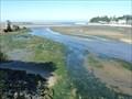 Image for DESTINATION:  Schooner Creek - Pacific Ocean