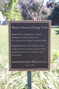 Image for Parson Brown Orange Tree