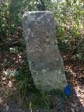 Image for Borne 95, forêt de Fontainebleau - France
