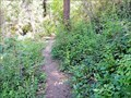 Image for Webster Road Trail - Fruitvale, British Columbia