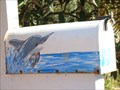 Image for Frolicking Dolphin - Ponte Vedra Beach, FL