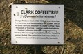 Image for Clark Coffeetree - Unionville, MO