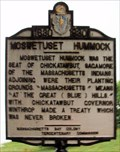 Image for Moswetuset Hummock  -  Quincy, MA