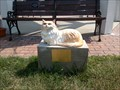 Image for Jeb the Cat - Fayette, Ohio, USA