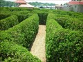 Image for Luray Garden Maze