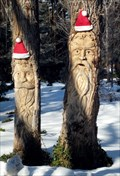 Image for Tree People