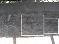 Image for Dinosaur Footprints - Westfield, MA
