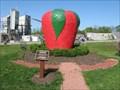 Image for The Big Apple- Medina , NY.