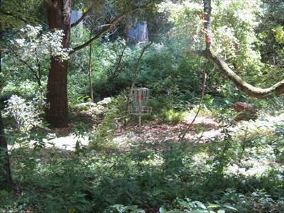 Hole 3 Basket, Aptos, CA