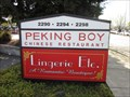 Image for Peking Boy - Pleasant Hill, CA
