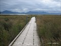 Image for Beluga Slough Boardwalk - Homer, AK, USA
