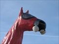 Image for Cold War Horse - Golden, CO
